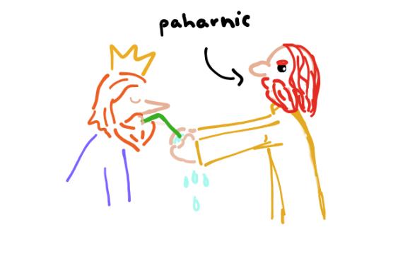 paharnic